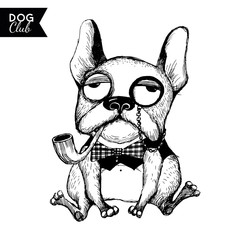 Vector funny dogs characters