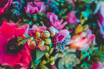 Beautiful Colorful flowers abstract background. pink, blue, cyan, green, Fluorescent Vivid color