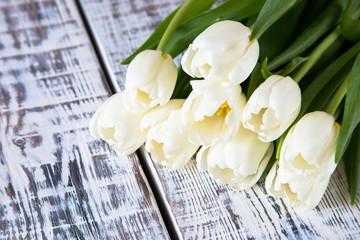 Fresh white tulips on light background. Selective focus