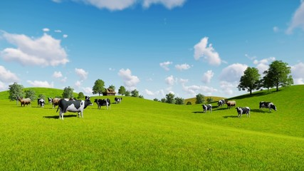 Wall Mural - Springtime rural scenery with a herd of cows grazing on the green hills nearby from the rustic house. Static shot. Realistic three dimensional animation.