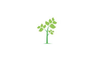 tree eco logo