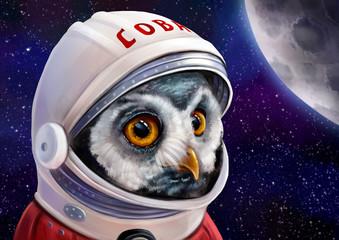 Сова космонавт (астронавт)