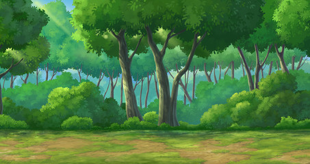 Background forest daytime