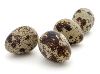 Quail egg isolated on white background cutout