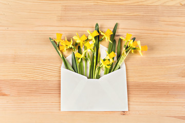 Yellow daffodils in an envelope on the table. Surprise gift.