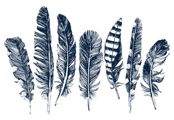 Hand drawn feathers on white background Fotomurales