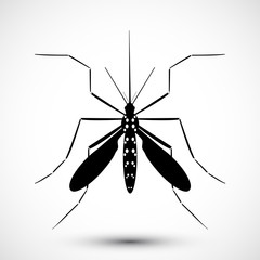 Mosquito vector. Symbol isolated on background. Icon ideal for webdesign, educational, informational, or health  related advisory projects. Aedes Aegypti  Editable vector.