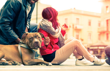 Couple with dog breed pit bull red nose relaxing in old town - Modern mixed carefree family - Concept of friendship between humans and animals - Cropped composition  vintage filter look with sun halo