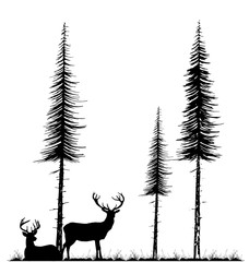 Silhouettes of two deers standing and lying under fir tree on the grass
