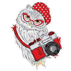 Cute owl with a camera. Owl vector. Postcard with an owl. Hipster.