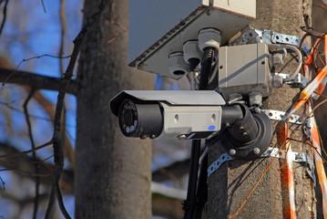 Камера видеонаблюдения на столбе в городском парке