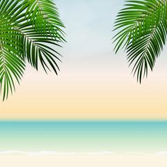 Summer Time Palm Leaf Vector Background Illustration