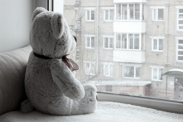 Toy Teddy Bear sitting on the windowsill and looking out the window