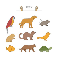 Outline set of pets. Line group of pets.
