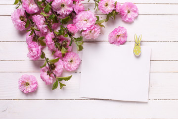 Pink   flowers  and empty tag on white  painted wooden planks.