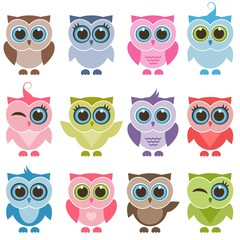 Funny owls and owlets set