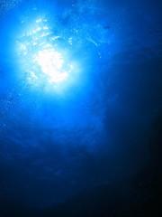 海底から見上げた太陽輝く水面 沖縄慶良間諸島