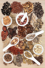 Chinese Apothecary Herbs