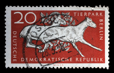 Stamp printed in GDR shows 10th Anniversary of Berlin ZOO, circa 1965