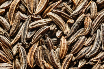 Macro of cumin seeds