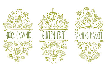 Organic food, gluten free, farmer market menu logo. Hand drawn vector sketch typographic element. Nature product label. Leaf, corn, carrot, cacao, cocoa, apple, pumpkin, floral, acorn.