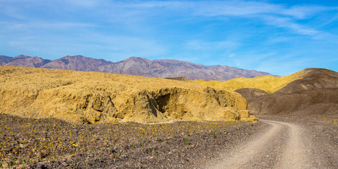 "Death Valley NP road into ""Mustard Canyon"""
