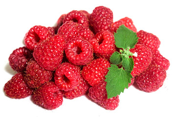 Raspberries and Mint on the white background