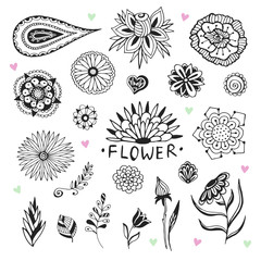 Vector flowers collection in zentangle style. Hand drawn illustration with creative doodles for coloring page and design decoration.