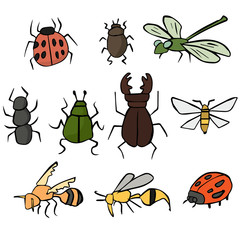 vector set of insect