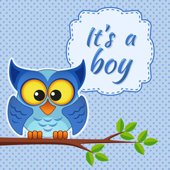 Baby boy shower card with owl on branch. It's a boy