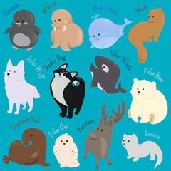 Set of cute cartoon winter north animal icon