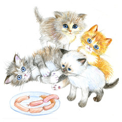 Funny kittens near a plate of sausages. Hand drawn