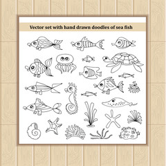 Vector set with hand drawn isolated doodles of sea fish