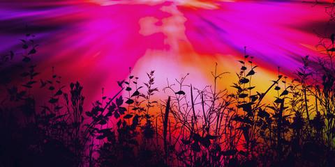 Poster Rose Beautiful colorful natural landscape