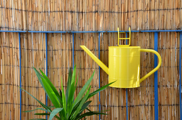 Yellow metal watering can hang on balcony railing next to green plant