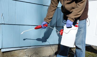 spray pesticide on the house exterior