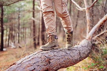 View of hiker legs on tree trunk