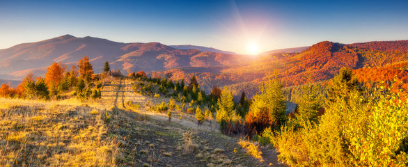 Wall Mural - colored autumn mountains