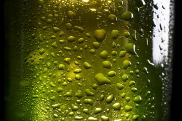 Green bottle of fresh beer, closeup