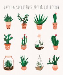Cacti and succulents vector collection  Set of twelve decorative houseplants
