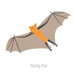 Australian flying fox