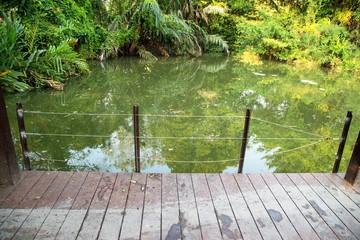 Wooden bridge through the lake