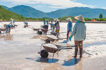 Women are working on salt field. Khanh Hoa Province, Vietnam, 2014