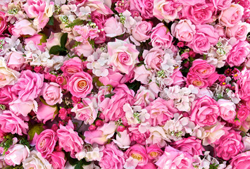 Pink rose background. Roses flower bouquet. For lover or sweetheart of Valentine's Day. Top view. Close up.