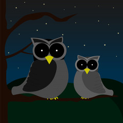 Two owls sitting on one tree during night with sky full of stars and hills on background