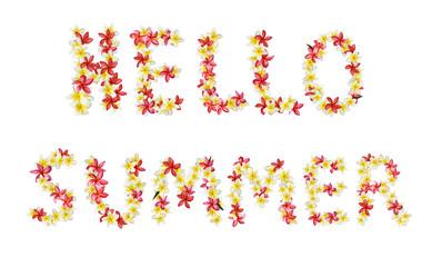 Hello summer title