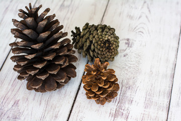 Three Rustic Pinecones on a White Barn Board Floor Close Up