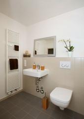 Kleines renoviertes Badezimmer ( barrierefrei und seniorengerecht)