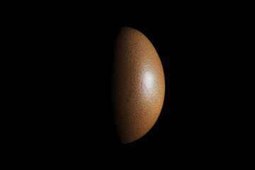 red hen egg