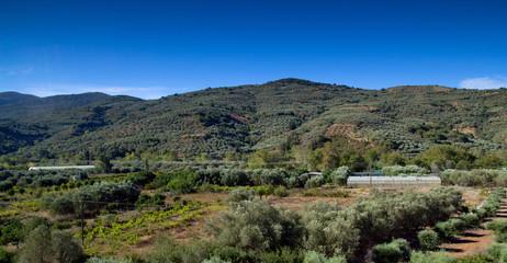 Agricultural land. Crete